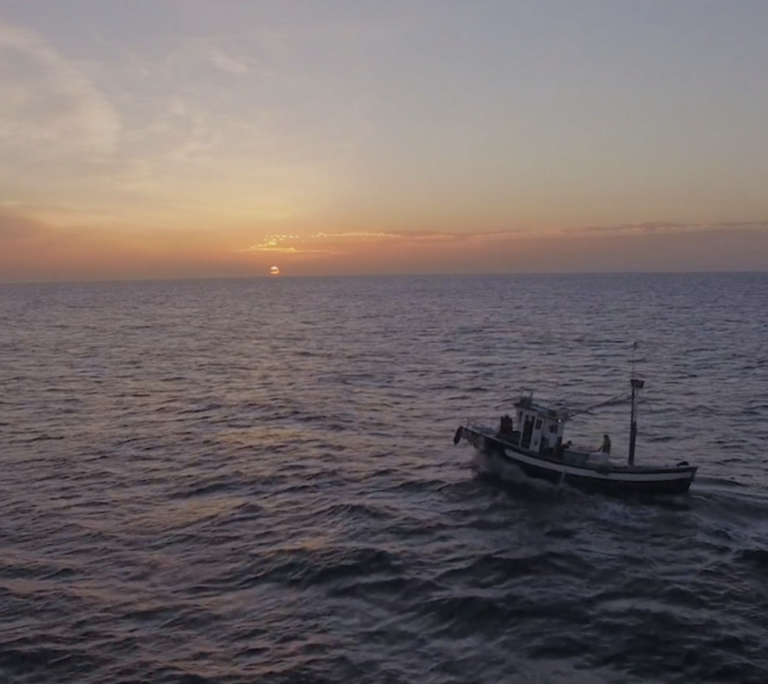 EDF Oceans: Fundraising video